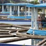 Upaya Mencari Air Bersih di Jakarta